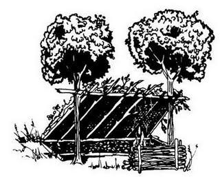 vegetation-lean-to-shelter