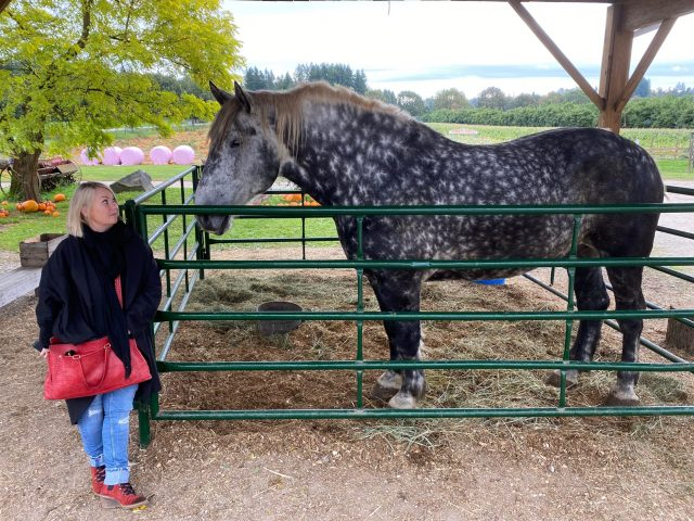 Opinion: Jann Arden fighting Alberta agriculture's sinister secret — the selling and shipping of horses for sushi meat