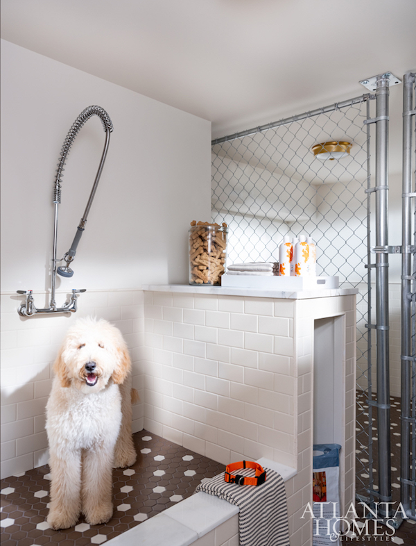 dog spa and shower in garage
