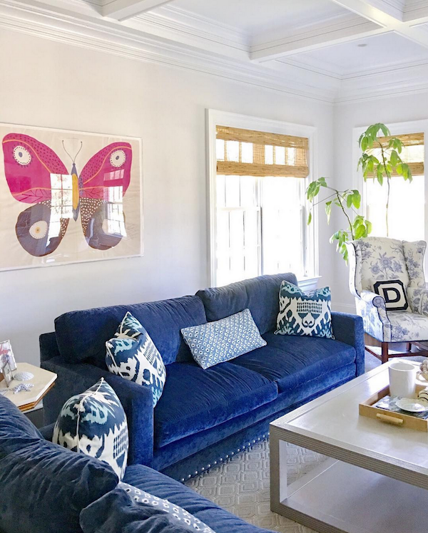 large butterfly art behind blue sofa