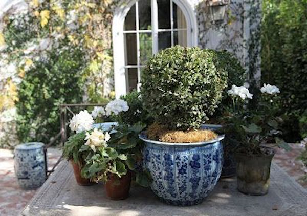 blue and white beautiful container garden ideas
