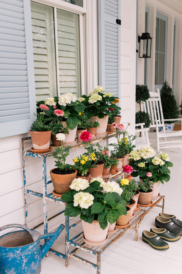 front porch beautiful container garden ideas and flowers