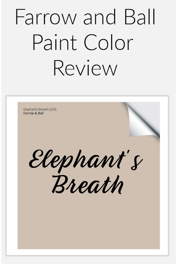 Farrow and Ball elephant's breath paint sample to pin