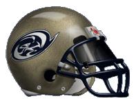woodland helmet