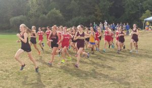 Watertown's Bethany Ottowicz, left, leads the pack at the start of Tuesday's cross country meet in Seymour. (Kyle Brennan/RA)