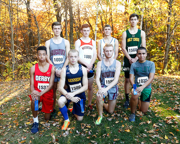 Watertown, CT- 19 October 2016-101916CM09- All NVL boys XC team kneeling from left: Derby's Kenny Little, Kennedy's Kyle Hotchkiss; Naugatuck's Grady Beasley; and Wilby's Bryan Oliveira. Back row from left, Naugatuck's David Kearns; Watertown's Connor Croke Oxford's Ethan LaFrance; and Holy Cross' Chris Flynn. Christopher Massa Republican-American (Christopher Massa/Republican-American)