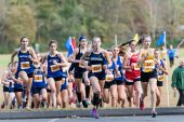 Shepaug's Elisa Afiouni, bib # 434 runs side by with Thomaston's Maegan Desmarais, bib #449 right behind the leader at the start of the BL Boys and Girls Cross Country Championships at Black Rock State Park in Watertown on Friday. Bill Shettle Republican-American