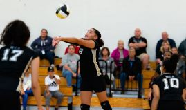 WCA's Emily Semedo (8) keeps the ball alive during their NVL match-up with Naugatuck Tuesday at Waterbury Career Academy. Jim Shannon Republican-American