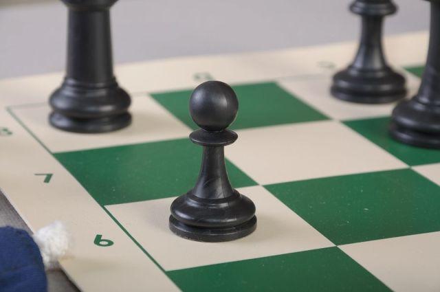 Un final de ajedrez en tablero de plástico