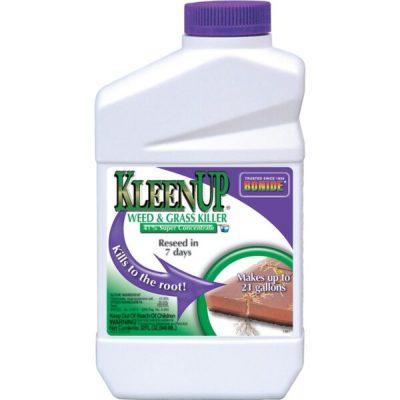 Bonide® Kleenup® Weed & Grass Concentrate