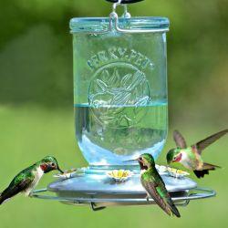 Clear Mason Jar - Hummingbird Feeder