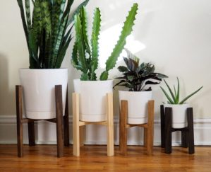 Natural Wood Plant Stand
