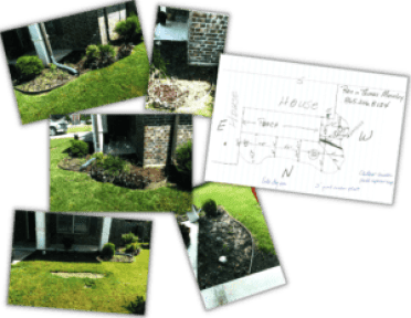 Plant By Number Photos And Measurements Example