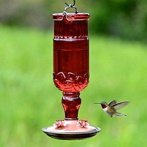 Perky-Pet® Red Antique Bottle Glass Hummingbird Feeder