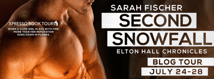 SECOND SNOWFALL Blog Tour