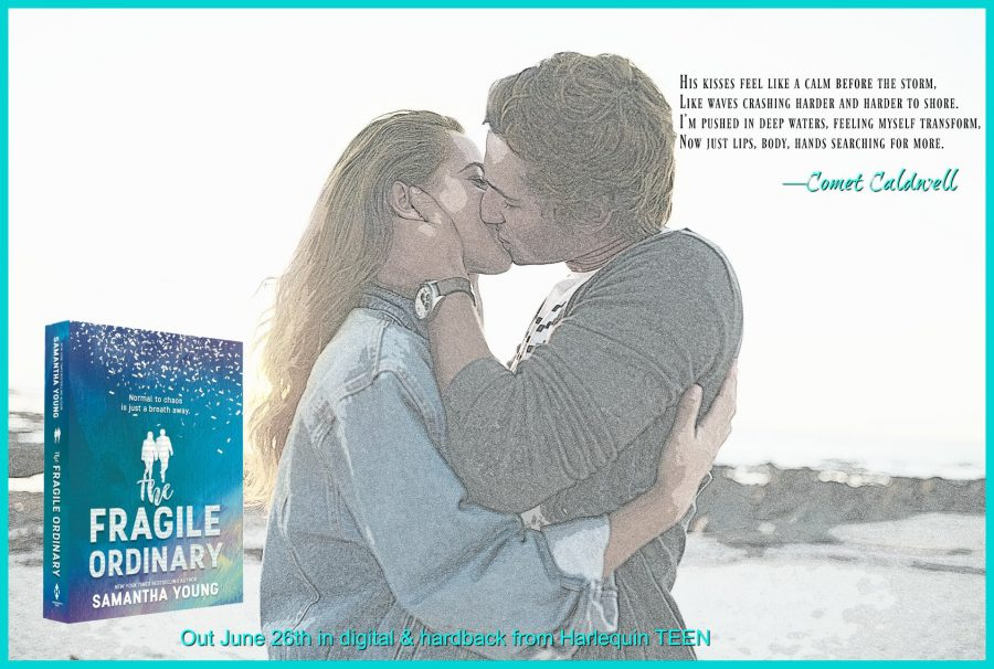 THE FRAGILE ORDINARY Teaser 2