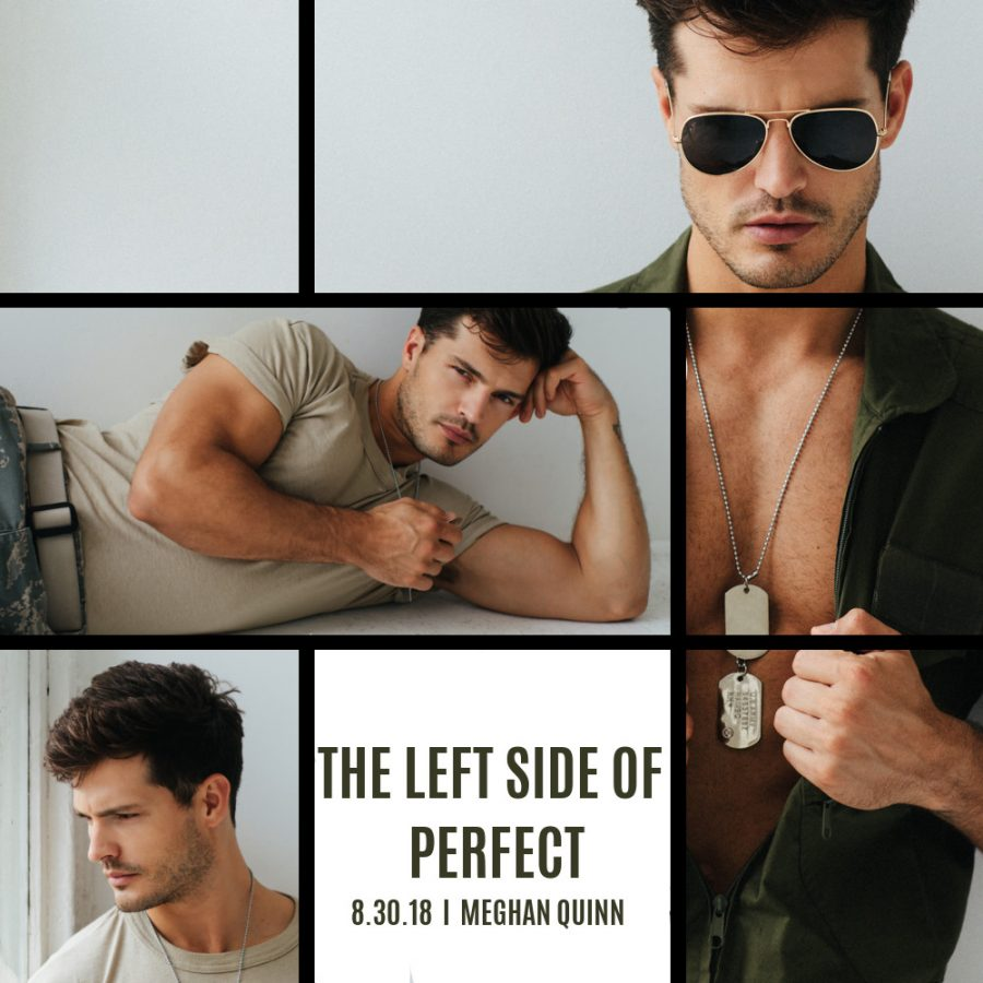 THE LEFT SIDE OF PERFECT Teaser 1