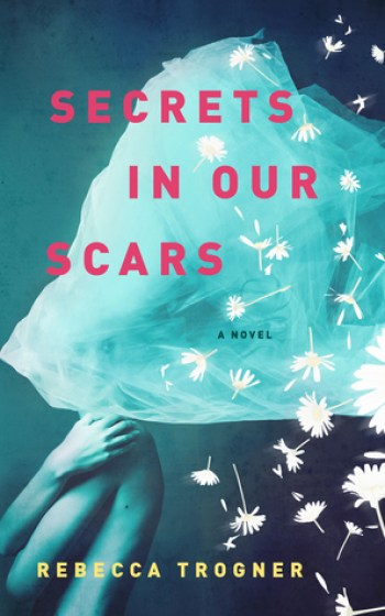 THE SECRETS IN OUR SCARS by Rebecca Trogner