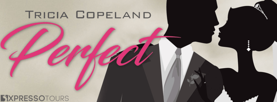 PERFECT Cover Reveal