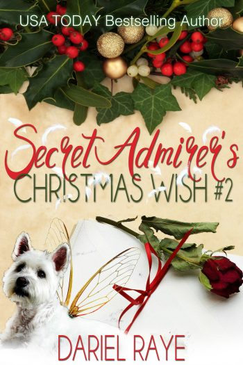 SECRET ADMIRER'S CHRISTMAS WISH No. 2 by Dariel Raye