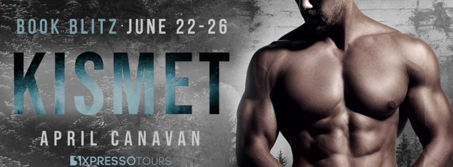 Welcome to the book blitz for KISMET, the first book in the adult romantic suspense series, Birch County Blue, by USA Today bestselling author April Canavan