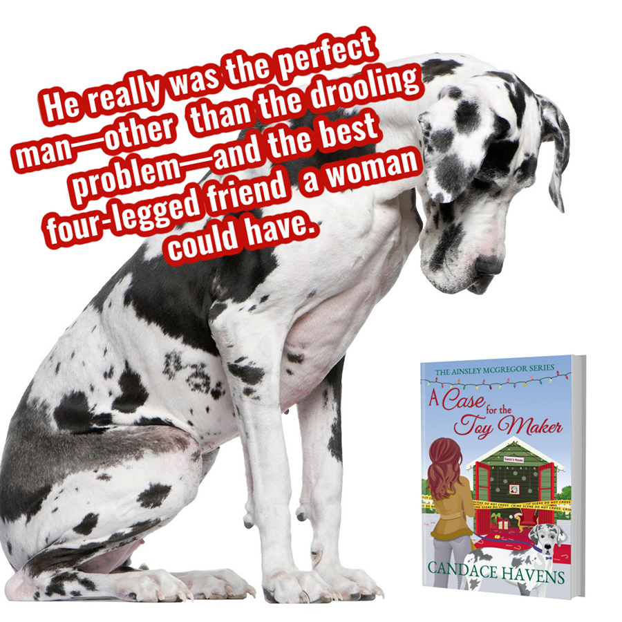 A CASE FOR THE TOY MAKER, the third book in the adult cozy mystery series, Ainsley McGregor, by Candace Havens