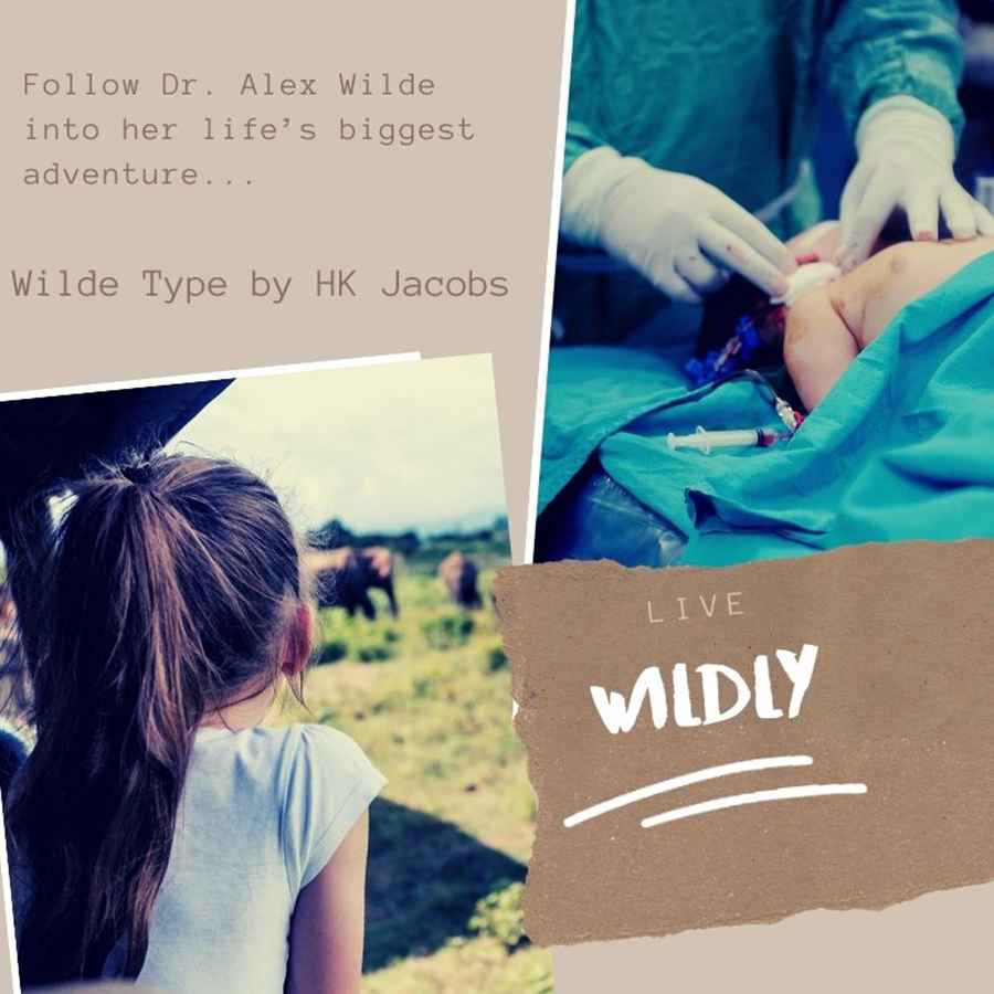 Teaser from WILDE TYPE, the first book in the adult contemporary romance series, Alex Wilde, by HK Jacobs