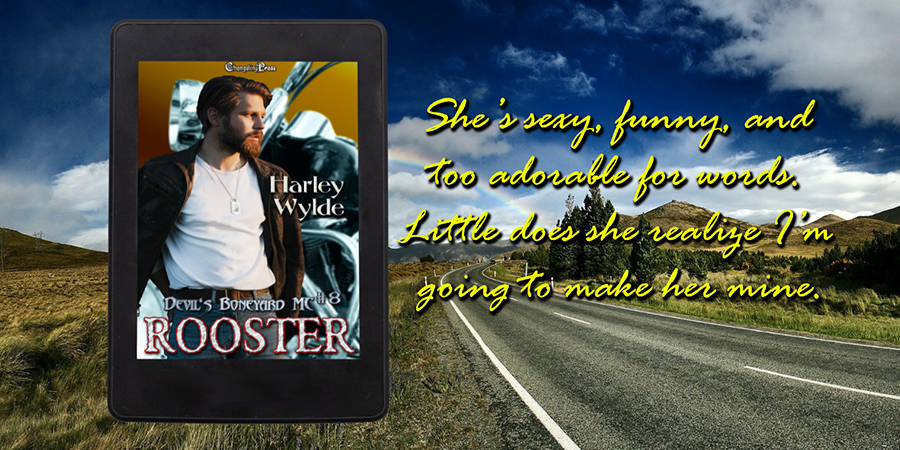 Teaser from ROOSTER, the eighth book in the adult contemporary romance series, Devil's Boneyard MC, by Harley Wylde