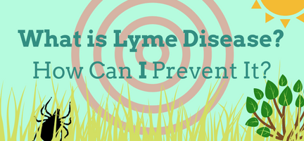 What Is Lyme Disease & How Can I Prevent It?