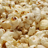 Popcorn Rapture: The Best and Worst of Cinema in 2008