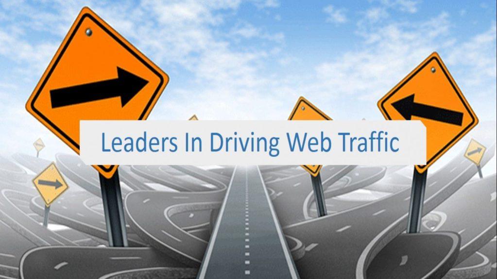 visitor dan traffic website