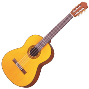 Guitar C80