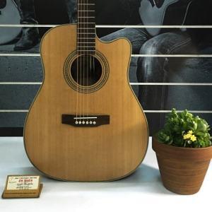 Guitar M12