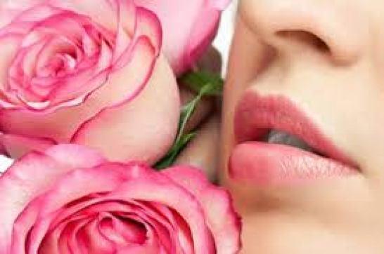 Trị môi thâm - Dưỡng môi bằng tinh dầu Hoa hồng