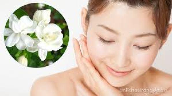 Hoa nhài là một loài hoa đặc biệt cao quý, với hương thơm sang trọng ngọt ngào