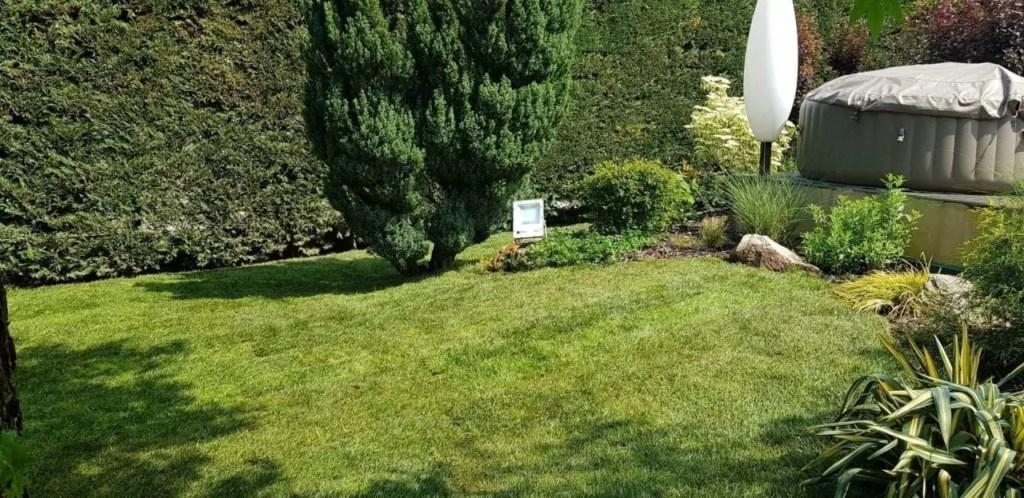 Un jardin fraîchement rénové avec du gazon en rouleau