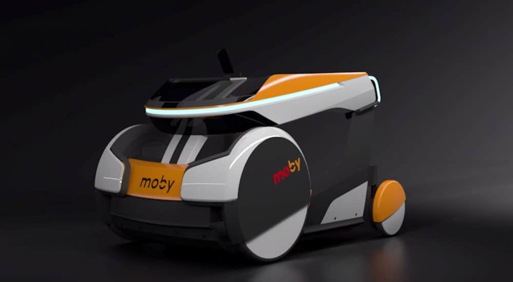 Moby mobility device