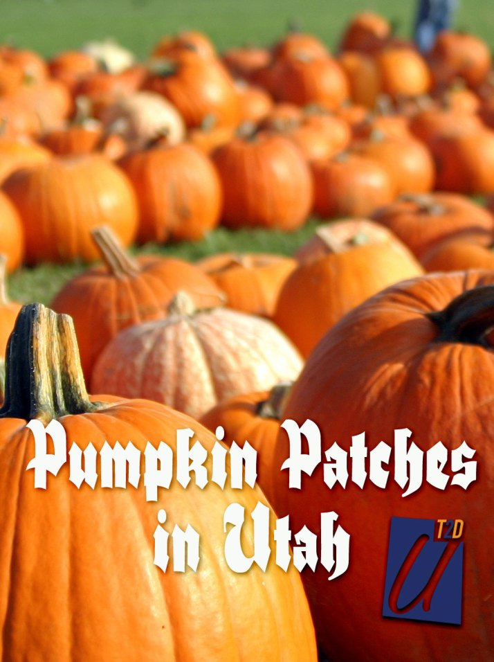 pumpkin patches in utah