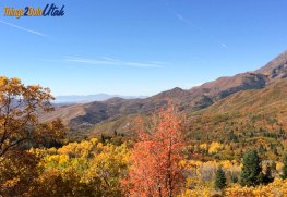 Fall colors at nebo loop