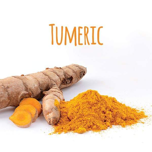 TOP HEALTH BENEFITS OF TURMERIC POWDER YOU MUST KNOW. Thingscouplesdo.com