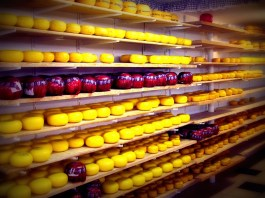 Cheese! Rounds of cheese at a family-run cheese and clog farm near Volendam, Holland.
