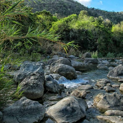 Yallas River in St Thomas