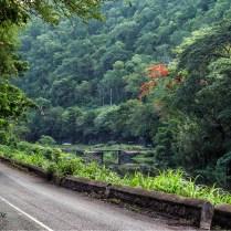 Flatbridge through the Gorge