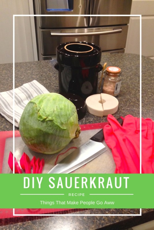 DIY Sauerkraut With A Fermentation Crock-HUmble House The Sauerkrock