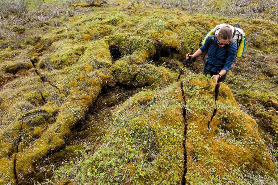 permafrost cracks