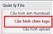 cau-hinh-chen-logo