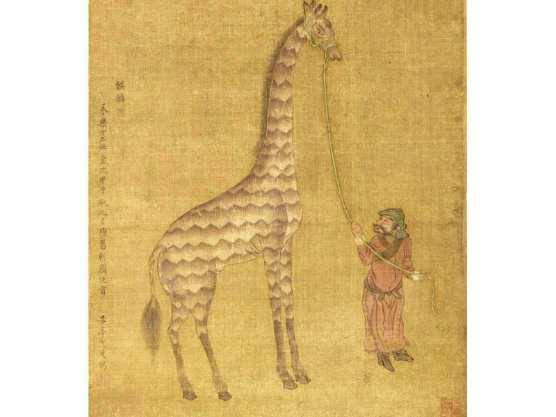 sultanate of mogadishu - giraffe