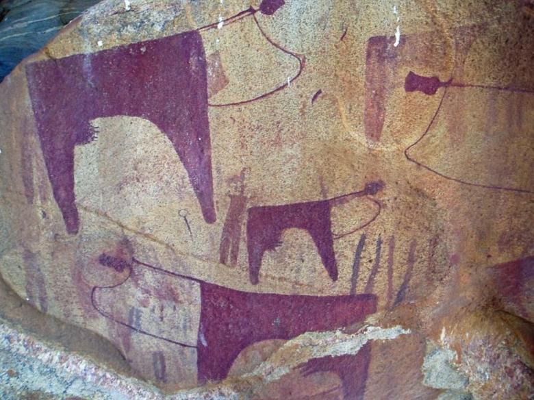 six landmarks of somalia - pic4 - herd of cattle