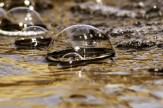 bubbles-51675_1920