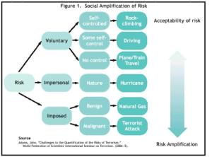 Flow Chart Representing Social Amplification of Risks